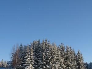 12 декабря - Парамон. По старому стилю 29 ноября. По народным приметам, если на Парамона пойдёт снег, то метели будут мести до Николы Зимнего (19 декабря). Багряная заря — к ясному дню.