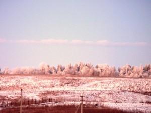 19 декабря - Николай зимний. По старому стилю 6 декабря.  По народным приметам, если зима до Николы была суровой, то после Николы предстоят оттепели до Спиридона-солнцеворота (25 декабря).