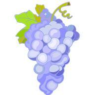 при сердечной недостаточности помогает настой из виноградного сока с корнем женьшеня