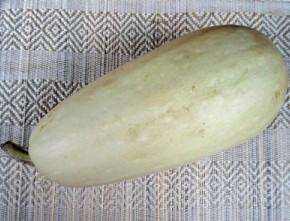 Кабачок (Cucurbita pepo var. giraumonas). Семейство Тыквенные - Cucurbitaceae. С лечебной целью используются плоды растения.