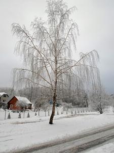 19 ноября — Павел-исповедник. По старому стилю 6 ноября. По народным приметам, если на Павла-исповедника снег, то вся зима будет снежная.