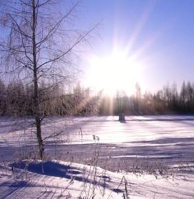 31 декабря – Модест. Новолетью пора.По народным приметам каков этот день, таков и июнь. Если же курица в этот день то и дело ощипывается – это к снегопаду. Если сорока летает близ жилья и лезет под стреху к вьюге.