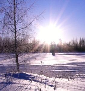 29 ноября - Матвеев день. По старому стилю 18 ноября. По народным приметам, если в этот день веют буйные ветры, то будут вьюги и метели до Николы (19 декабря).