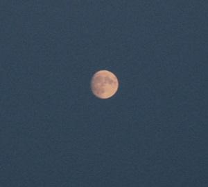 12 января - Анисья - желудочница, Порезуха. По старому стилю 30 декабря. По народным приметам, если вокруг луны два тусклых красноватых кольца — будут сильные морозы.