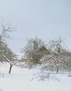 2 января – Игнатий. По старому стилю 20 декабря. По народным приметам если на Игнатия метель и снегопад, то в июне будут частые дожди.