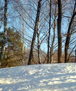 18 февраля - Агафья-коровница, поминальница, голендуха. По старому стилю 5 февраля. По народным приметам, если в этот день, третий после Сретения, было тепло, то больше холодов не придвиделось. Мороз в этот день — к дружной весне, сухому и жаркому лету.