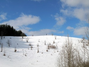 30 января — Антон-перезимник. Антонина Половина. По старому стилю 17 января. По народным приметам, если на Антона-перезимника тепло — не жди тепла, это только один тёплый день, будет мороз.