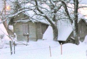 3 февраля — Макситм Грек, Максим-утешитель. По старому стилю 21 января. По народным приметам, если в Максимов день погоже, так и весна будет пригожа. Погода этого дня определяет судьбу урожая.