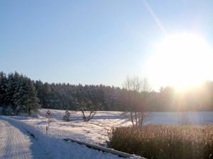 14 февраля - Трифонов день. По старому стилю 1 февраля. По народным приметам, если на Трифона небо в звёздах, то будет поздняя весна.