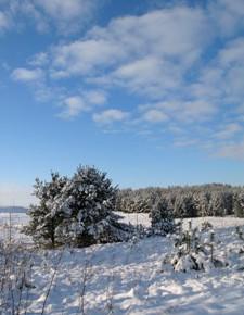 21 марта – Вешнее равноденствие. Вербоносица. По старому стилю 8 марта. Народные приметы об этом дне нам говорят: если облака высоко и плывут быстро – к хорошей погоде. Если снег ложится на полях неровно, волнисто, буграми – уродятся огородные овощи и яровые хлеба.