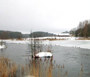 6 марта – Тимофей-весновей.По старому стилю 21 февраля.По народным приметам, если в этот день при северном ветре грянет первый гром - весна будет холодной, при восточном – сухая и тёплая, при южном – тёплая.