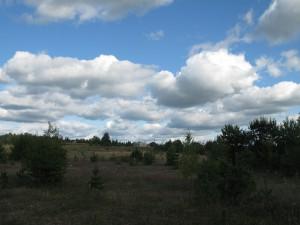 7 ноября — Почитание красной горки. По старому стилю 25 октября. По народным приметам, если осиновые листья ложатся лицом вверх, то зима будет морозная, навыворот — зима будет мягкая.