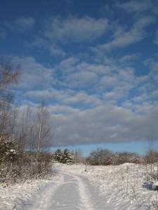 1 января - Вонифатий. Новый год. По старому стилю 19 декабря. По народным приметам, если день холодный, то июль будет сухим и жарким, не жди грибов и ягод до осени.