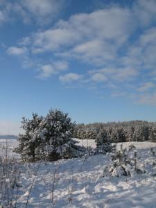 5 января - Федул. По старому стилю 23 декабря. По народным приметам, если висит много длинных и частых сосулек — к хорошему урожаю. Крестьяне говорили: Пришёл Федул, ветер подул - к урожаю. Каков Федул — таков и ноябрь.