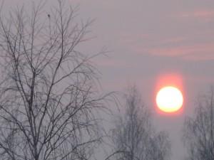 26 февраля – Мартын. По старому стилю 13 февраля. По народным приметам туманный круг вокруг солнца означал, что будет снег, красноватые кольца вокруг луны – мороз, небо, затянутое тучами – потепление.