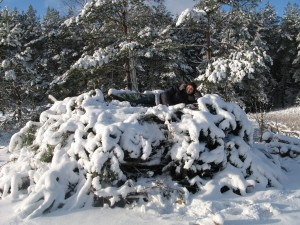 17 февраля Николай Студёный. По старому стилю 4 февраля. По народным приметам, если лес почернел — к оттепели. Длинные сухие еловые ветки сгибаются — к метели, распрямляются — к хорошей погоде. Редкий год на руси обходился без никольских морозов: «Студёный день — шубу снова надень».